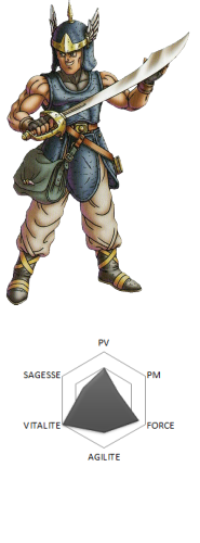 Heros Dragon Quest VI Amos