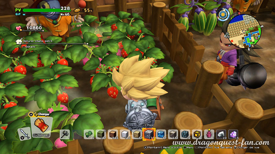 Dragon Quest Builders 2 frais extra